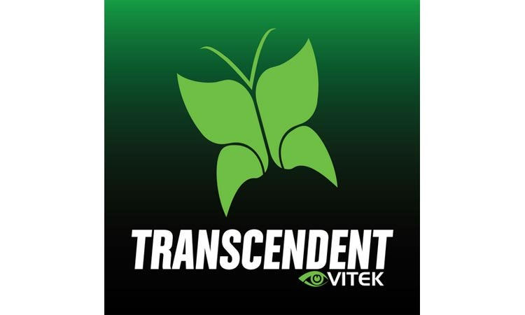 Transcendent VMS viewer - программа для видеонаблюдения. Инструкция. Скачать