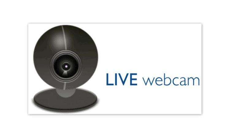 LiveWebCam - программа для видеонаблюдения. Видеомануал. Скачать