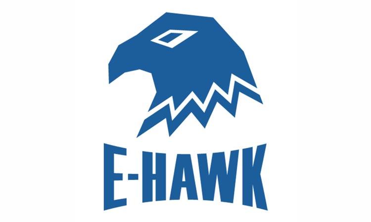 E-Hawk - приложение для видеонаблюдения. Инструкция. Скачать