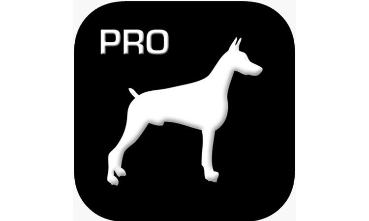 TOUGHDOG VIEWER PRO - приложение для видеонаблюдения. Видеомануал. Скачать