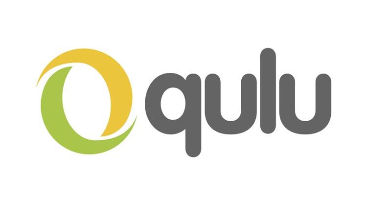 Qulu — программа для видеонаблюдения. Инструкция. Скачать