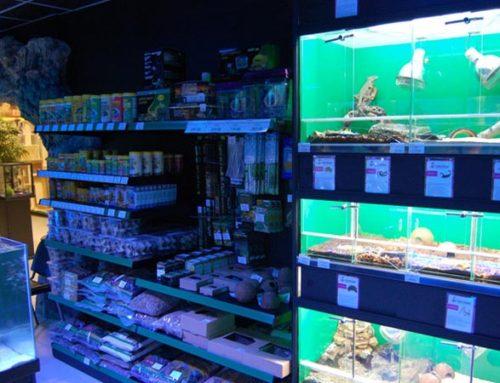 Установка систем видеонаблюдения в зоомагазинах Москвы и Подмосковья