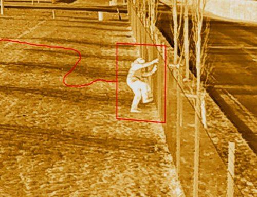 Основные преимущества тепловизионных камер видеонаблюдения