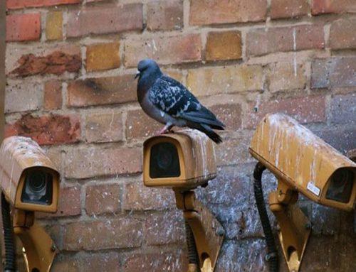 5 ошибок, которые допускаются при самостоятельной установке системы видеонаблюдения